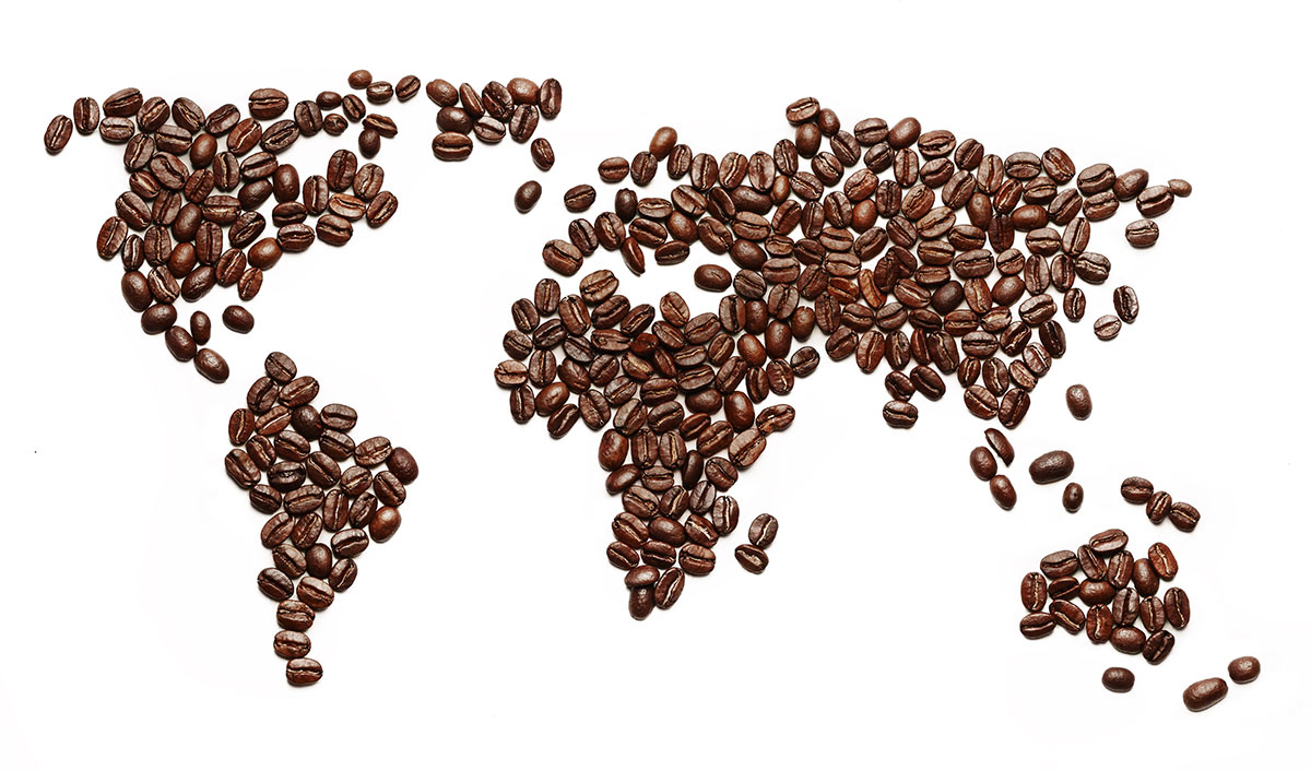 Les différentes variétés de café